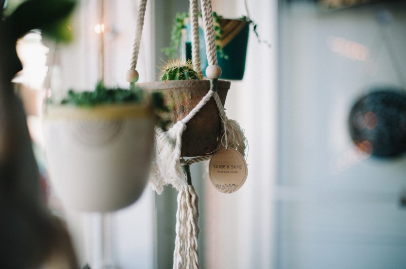 Cute hanging planters sold at Confetti Floral flower shop in Abbotsford